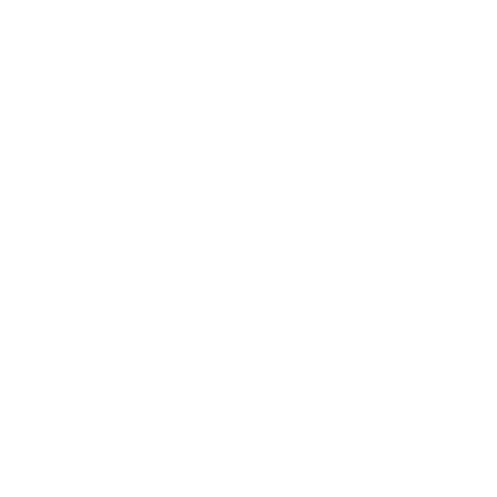 email icon white
